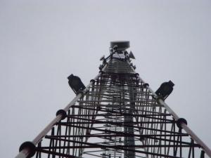Stacje bazowe operatora sieci T-Mobile